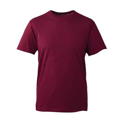 Anthem Clothing at Fifth Column - t shirts burgundy